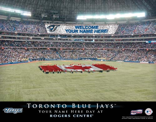 TORONTO BLUE JAYS MLB STADIUM PRINT