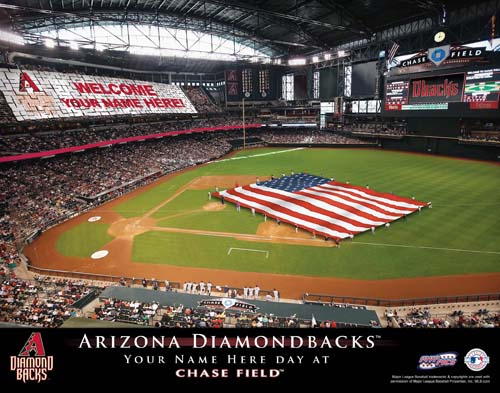 ARIZONA DIAMONDBACKS MLB STADIUM PRINT