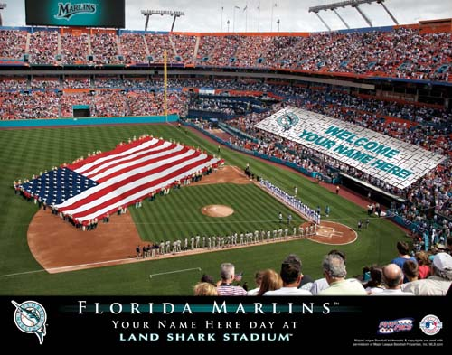 FLORIDA MARLINS MLB STADIUM PRINT