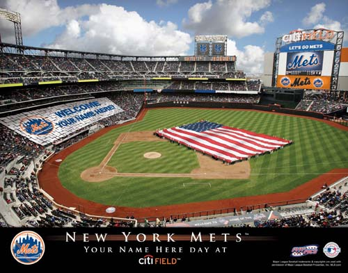NEW YORK METS MLB STADIUM PRINT
