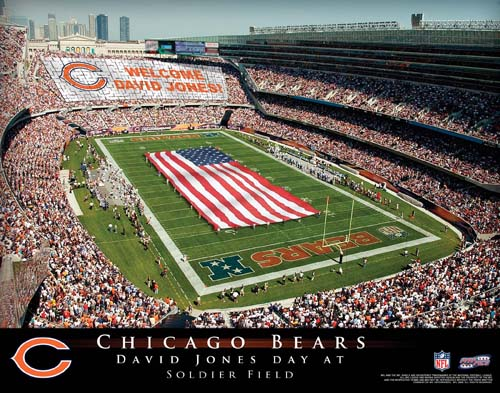 CHICAGO BEARS NFL STADIUM PRINT