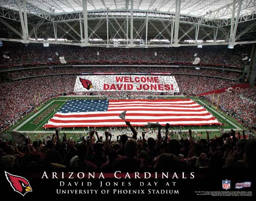 ARIZONA CARDINALS NFL STADIUM PRINT