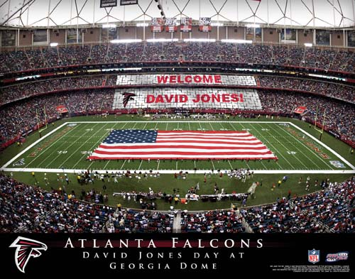 ATLANTA FALCONS NFL STADIUM PRINT