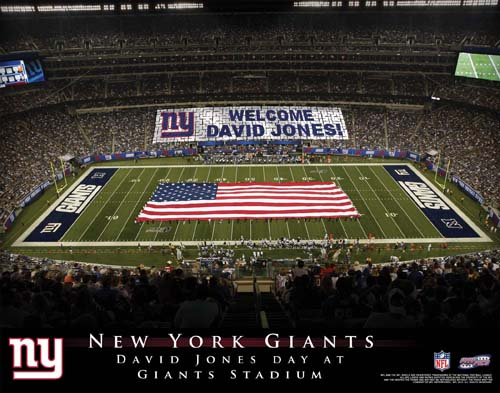 NEW YORK GIANTS NFL STADIUM PRINT