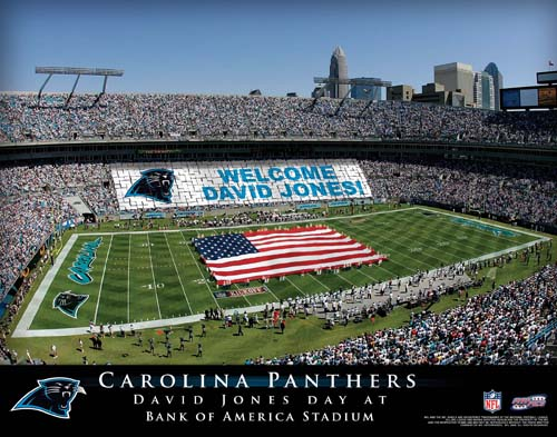 CAROLINA PANTHERS NFL STADIUM PRINT