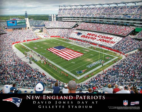 NEW ENGLAND PATRIOTS NFL STADIUM PRINT