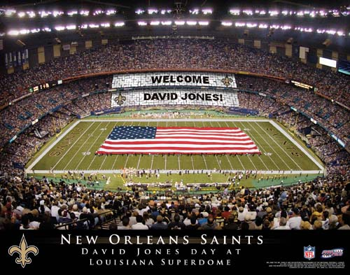 NEW ORLEANS SAINTS NFL STADIUM PRINT