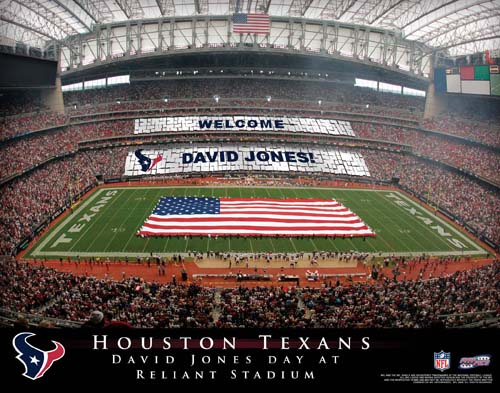 HOUSTON TEXANS NFL STADIUM PRINT