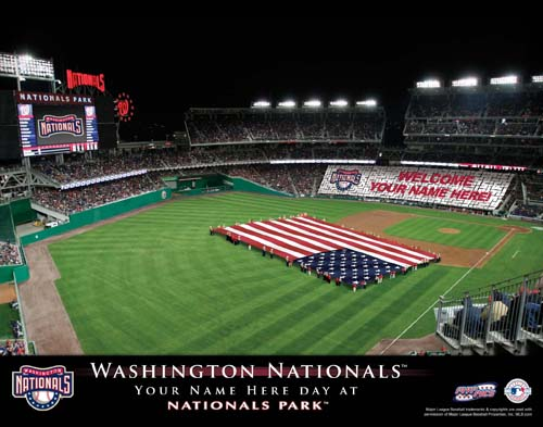 WASHINGTON NATIONALS MLB STADIUM PRINT