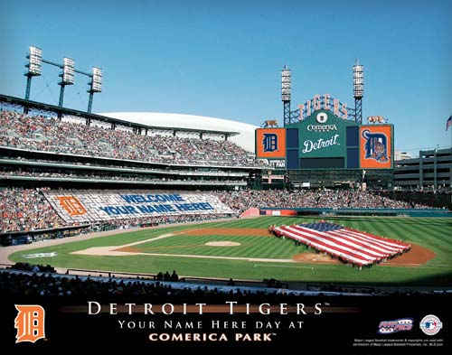 DETROIT TIGERS MLB STADIUM PRINT
