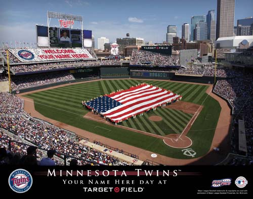 MINNESOTA TWINS MLB STADIUM PRINT