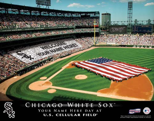 CHICAGO WHITE SOX MLB STADIUM PRINT